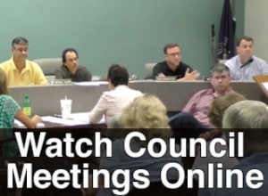 Watch borough council meetings online