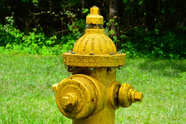 A fire hydrants in front of a grassy background